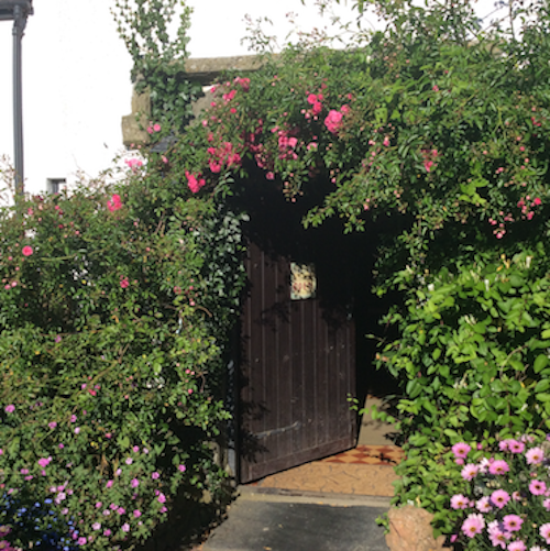 Our Front Door - Click Here for Our Contact Page